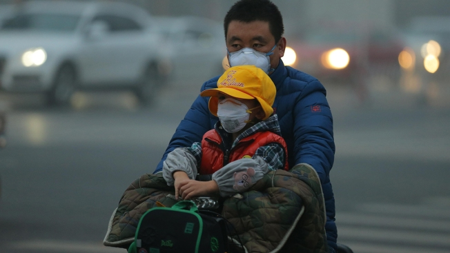 Climate Change Damaging Lifelong Health of Children Across the World, Medical Officials Warn