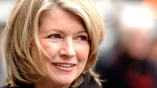 'Darn!!!!!': Martha Stewart Gets Stuck In the Snow Near Her New York Home