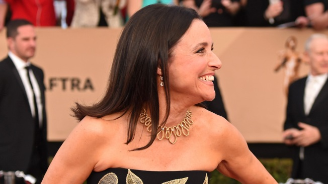 Beat It: Julia Louis-Dreyfus Sons Mark Her Last Day of Chemotherapy