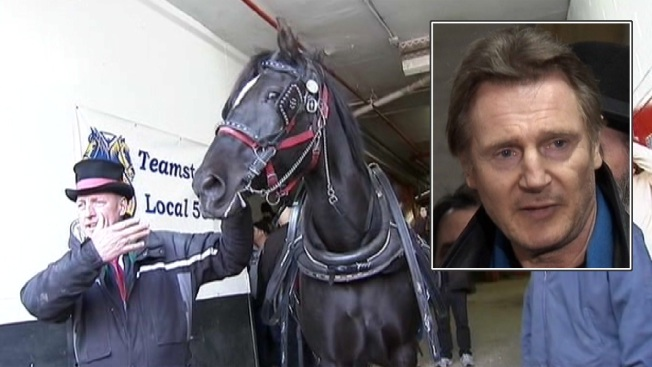 Liam Neeson Blasts NYC Mayor Over Horse Carriages