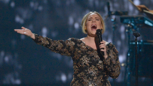Hello, From The Wiltern: Surprise Pre-Tour Show for Adele Fans