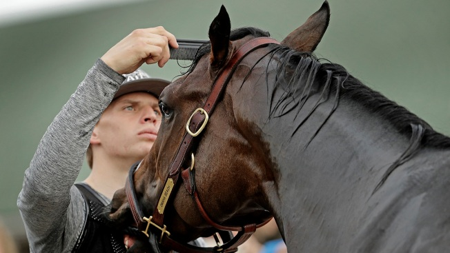Kentucky Derby Favorite Omaha Beach Scratched Due to Breathing Problem