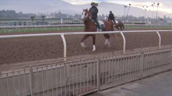 Another Race Horse Dies At Santa Anita Days After Track