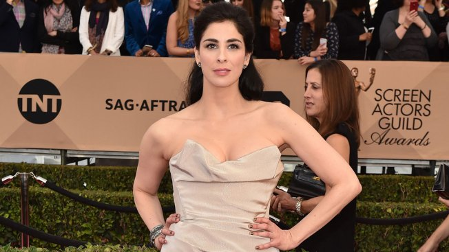 Comedian Sarah Silverman 'Lucky to Be Alive' After Surgery