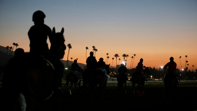 After Spate of 22 Horse Deaths, Santa Anita Set to Reopen on