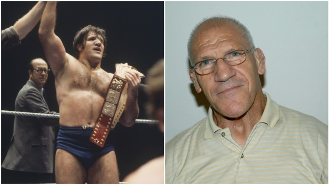 Professional Wrestling Hall of Famer Bruno Sammartino Dies at 82
