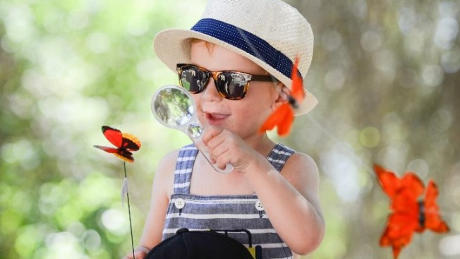 Free Bugs and Butterflies Day at Riley Wilderness