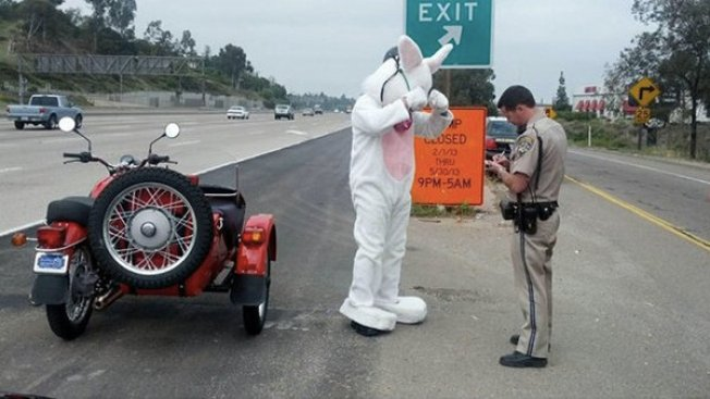 Easter Bunny Receives Warning From CHP, Hops Back on Motorcycle