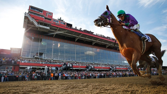 California Chrome Cleared to Wear Nasal Strip at Belmont Stakes