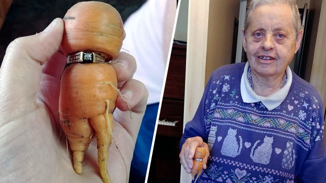 Engagement ring lost in garden found 13 years later, around a carrot