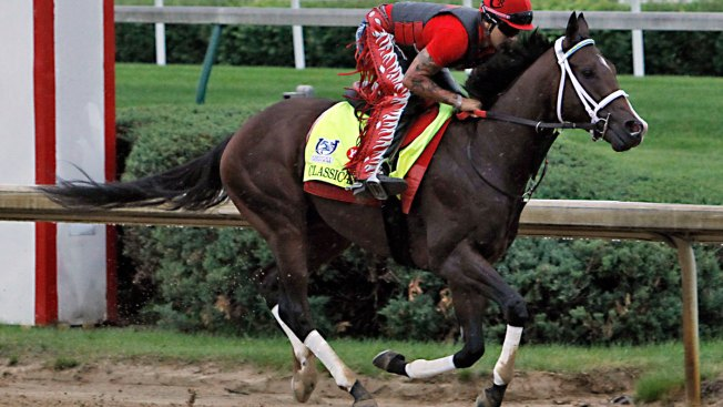 New challengers for Always Dreaming at the Preakness