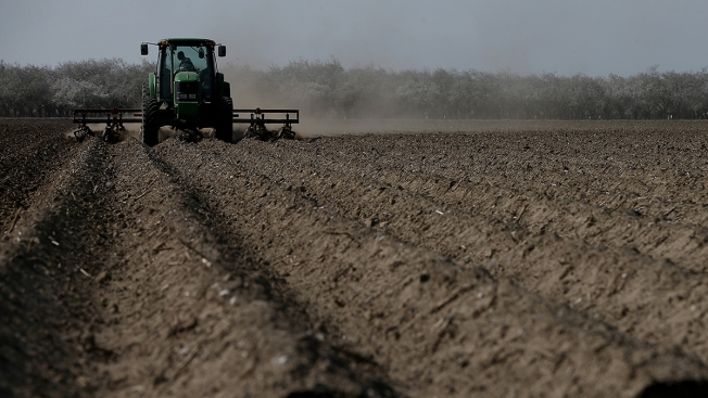 California Farmers Reap Record Sales in Record Drought