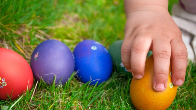 Easter Top Picks: Bunnies to Egg Hunts