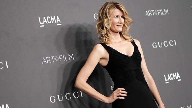 Stars Wars Role? You'll Have to Force it Out of Laura Dern