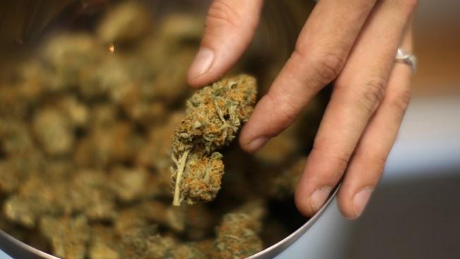 Teens' Marijuana Use on the Rise: SANDAG