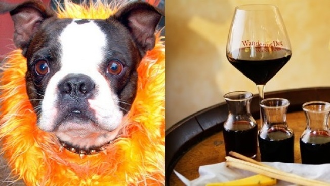 Pinot for Puppies: Fundraiser in Solvang