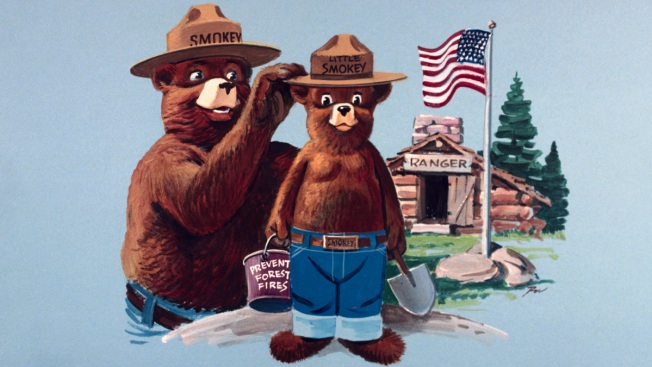 Forest Fire Prevention Icon Smokey Bear Is Turning 75