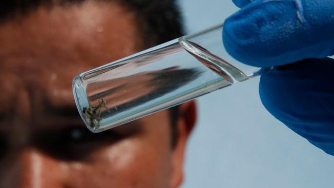 West Nile Virus Detected in 4 Los Angeles County Communities