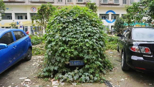 """Zombie Car"" Abandoned in China"