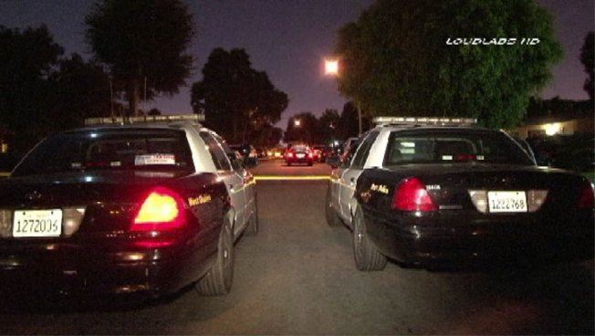 Long Beach Police Officer Shoots Pit Bull During Barricade