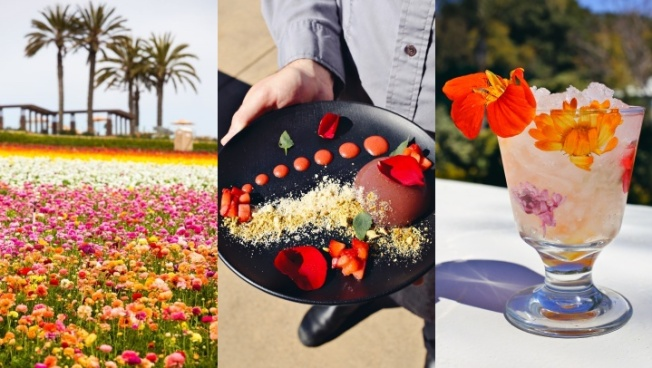 The Flower Fields Are Inspiring Foodie Fun