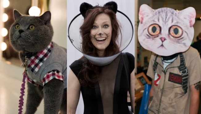 CatCon 2019 Details Now Meowing