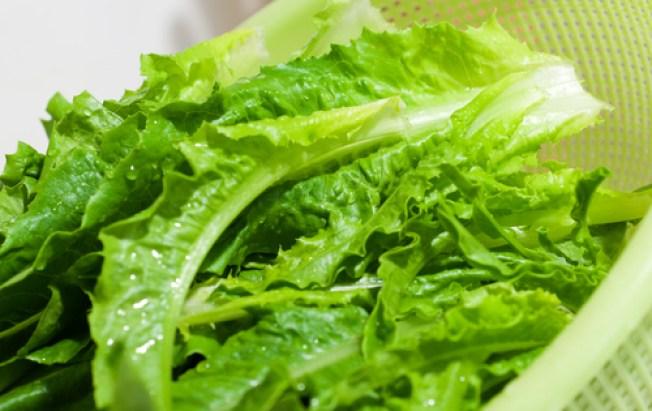 Calif. Supplier Recalls Lettuce Over E. Coli Fears