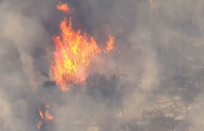 Wildfire Burns Hundreds of Acres, Forces Evacuations Near Ojai