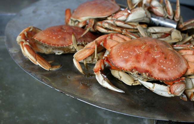 Crab Time: Claws Up for Great Bay Area Bites