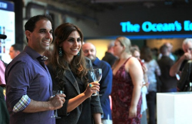 Wine, Jazz, Otters: Evenings by the Bay