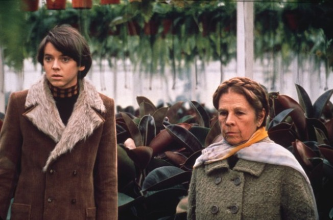 """Harold and Maude"" Night"