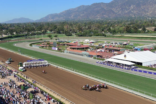 District Attorney's Office Task Force to Investigate Santa Anita Horse Deaths