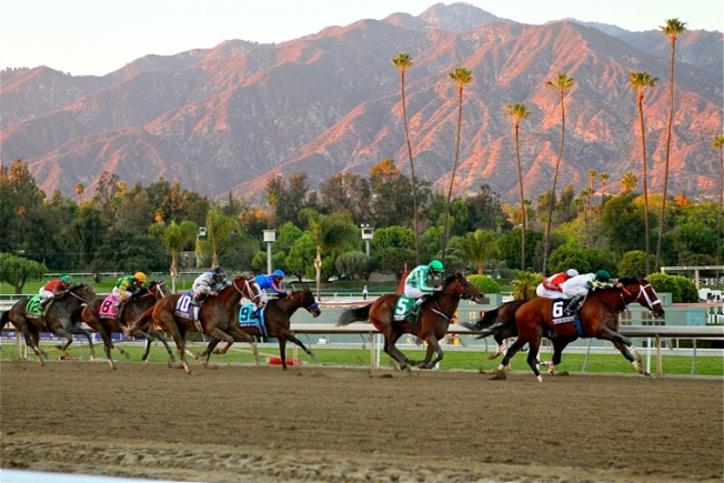 Your Perfect Weekend: The Breeders' Cup