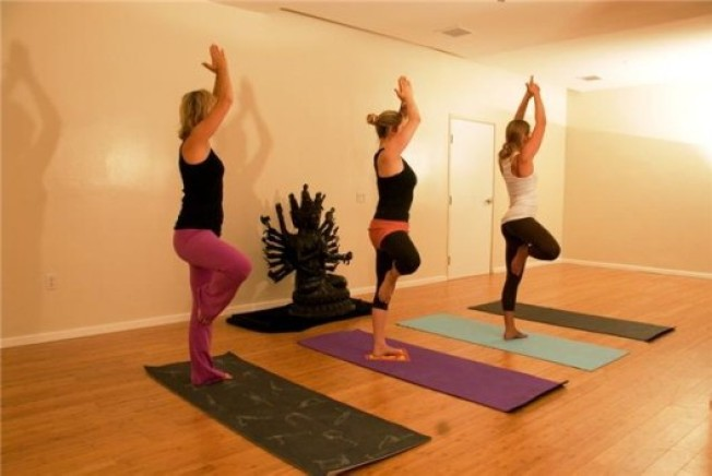 Preece & Toff Salon Brings Downward Dogs to Fred Segal