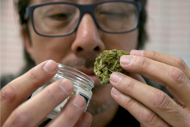 House postpones debate on contentious pot bill