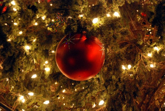 Avoiding a Christmas Tree Fire: Calfire