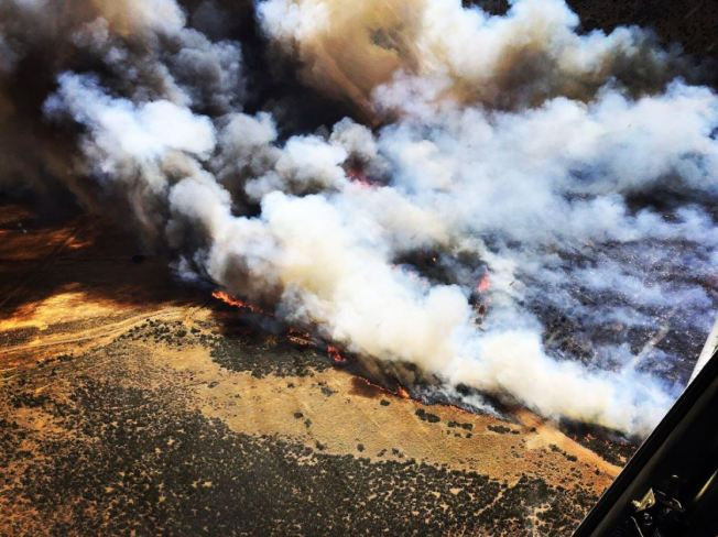 Evacuations Lifted for Stone Fire in Agua Dulce   NBC Southern