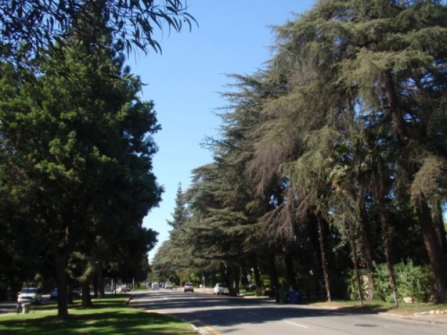 Streets We Love: Chandler Blvd in Sherman Oaks