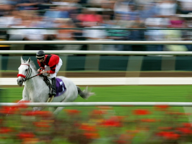 The Breeders' Cup Returns To California
