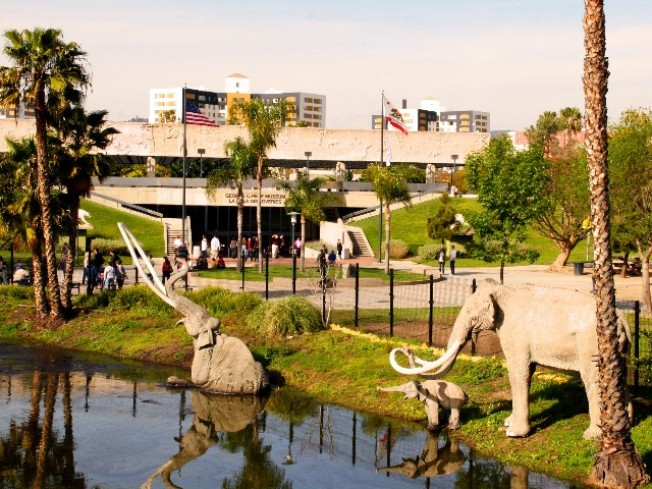 Tar Pits to Become Ice