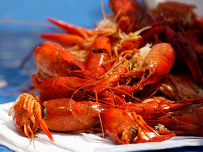Crawfish, Lobster Fests Rule Weekend