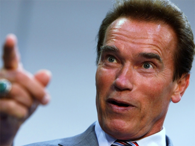 Schwarzenegger, Brown Want Gay Marriage Now