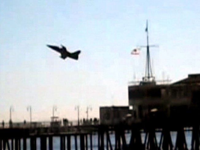 "Caught on Video: ""There Are Military Jets Buzzing Us"""