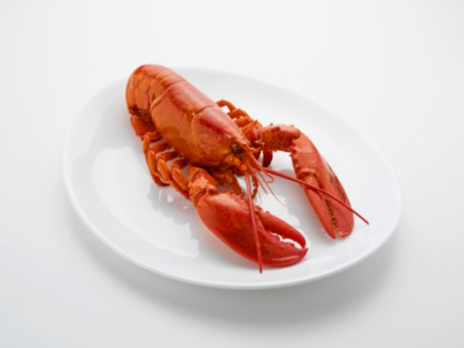 """Whale"" Serves Lobster"
