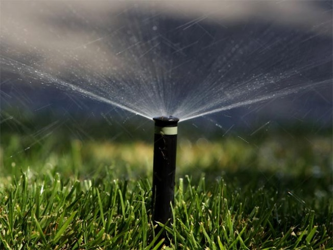More Local Pols Caught Violating Water Restrictions: Investigation
