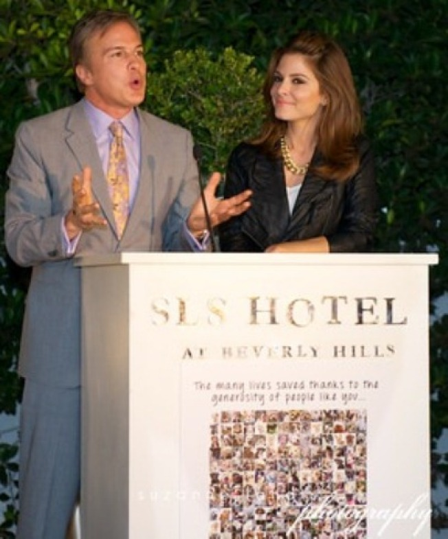 Be the Toast of the Breeders' Cup
