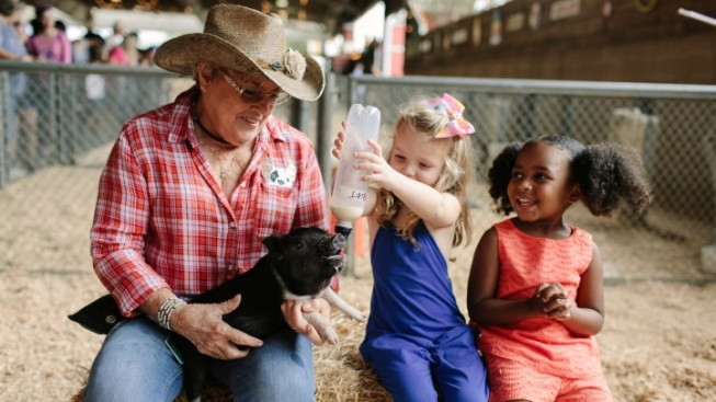 Weekend: Squeal, It's the LA County Fair