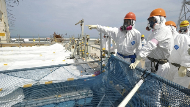 Kelp Off California Coast to Be Tested for Fukushima Radiation