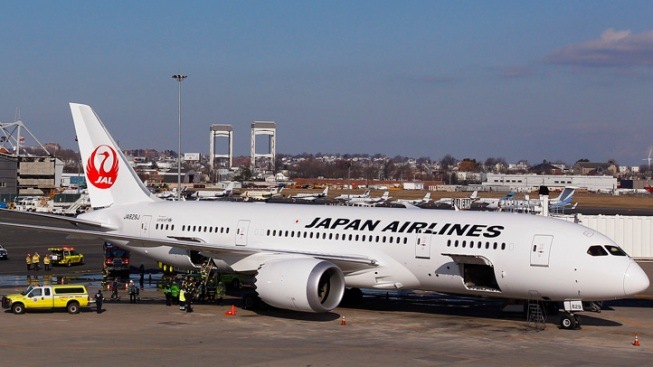 Boeing 787 Dreamliner Jets Grounded After Problems