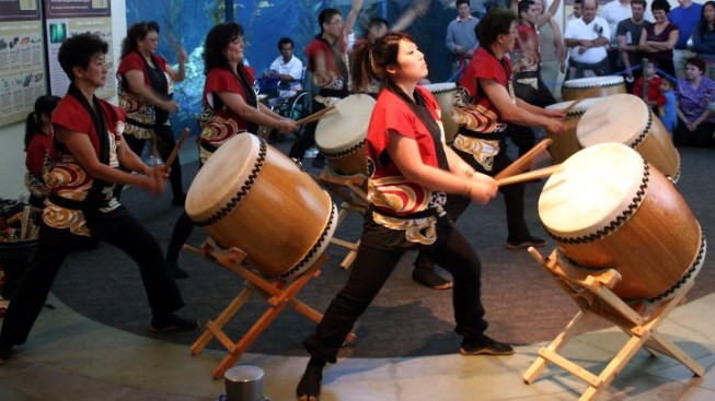 Taiko Sounds at Two Autumn Fests